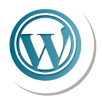 wordpress copy